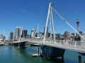 auckland-most-kukabara