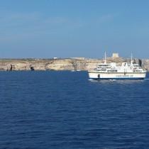 Malta_Gozo_Kukabara